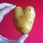 Kartoffelherz_AndelkaKrizanovic