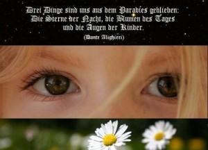 Sterne Blumen Augen 300x216 Baldersbra   Das Augenlicht der Kamille